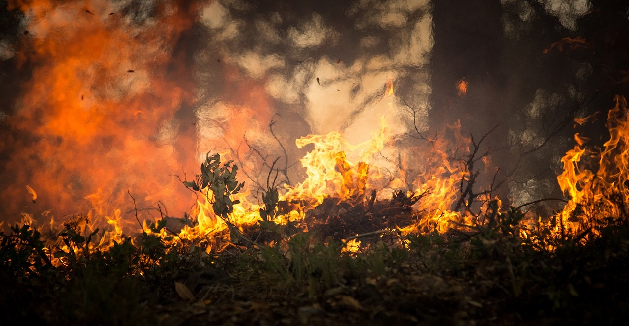 Chubb Insurance Wildfire Defense Information
